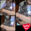 Котята ищут дом в Пинске