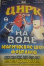 "Цирк на воде ""Круиз"""