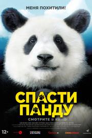 Спасти панду