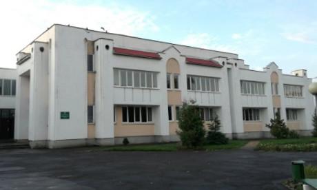 В Пинске 12-летняя школьница ножом ранила двух одноклассниц
