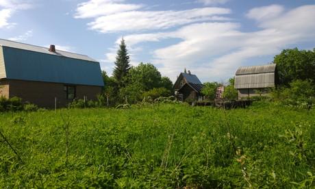 Земельные участки в Пинске продадут с аукциона